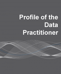 Cover of the Profile of the Data Practitioner
